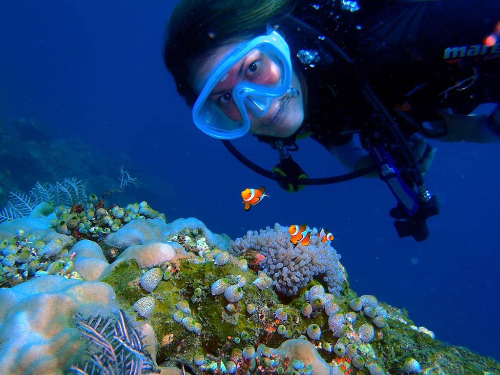 aussie marine adventures scuba diving lighthouse exmouth clown fish